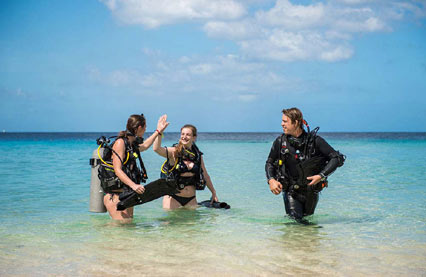 Dive special, including rental car and delux accomodation by Sunny Curacao